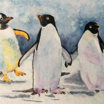 penguins, winter, Christmas, seasonal, zoo, Antarctic