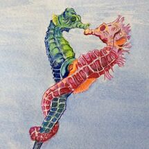 seahorses, sea creatures, marine life, sea, diving
