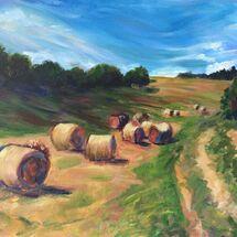 field, harvest, bales, hay, sky, hedges, landscape