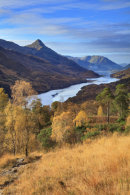 AUTUMN ABOVE LOCH LEVEN