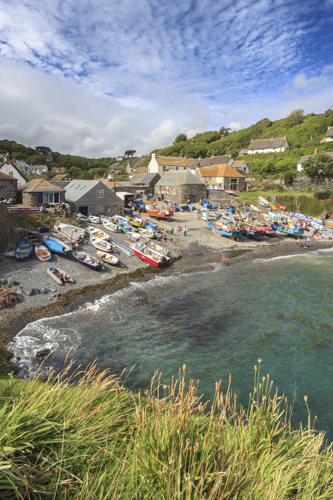 CADGWITH VIEW