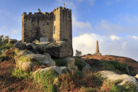 CASTLE AND MONUMENT (Carn Brea)