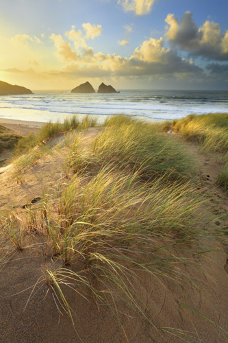 DUNES AT SUNSET (Holywell)