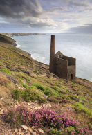 EARLY EVENING LIGHT (Wheal Coates)