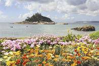 FLORAL DISPLAY (St Michael's Mount)