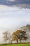 FOG IN THE USK VALLEY