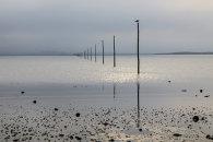 HOLY ISLAND POSTS (Lindisfarne)