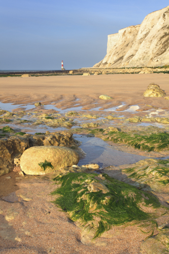 LOW TIDE AT FALLING SANDS