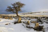 SNOW AT THE WINSKILL STONES