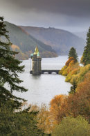 AUTUMN AT LAKE VYRNWY