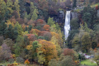 AUTUMN AT PISTYLL RHAEADR WATERFALL