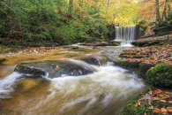 AUTUMN COLOUR AT NANT MILL WATERFALL