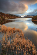 REEDS AT SUNSET (Llyn Padarn)