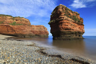 SANDSTONE SEA STACK (Ladram Bay)