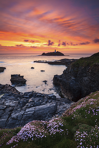 SPRING FLOWERS AT SUNSET (Godrevy)