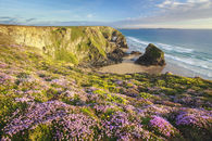 SPRING AT BEDRUTHAN STEPS