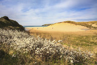 SPRING AT HOLYWELL