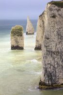 THE PINNACLES (Dorset)