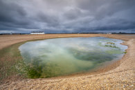 THE POOL (Shingle Street)