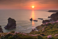 THRIFT AT SUNSET (Bedruthan Steps)