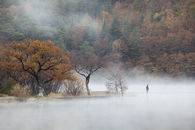 FISHERMAN IN THE MIST (Crummock Water)