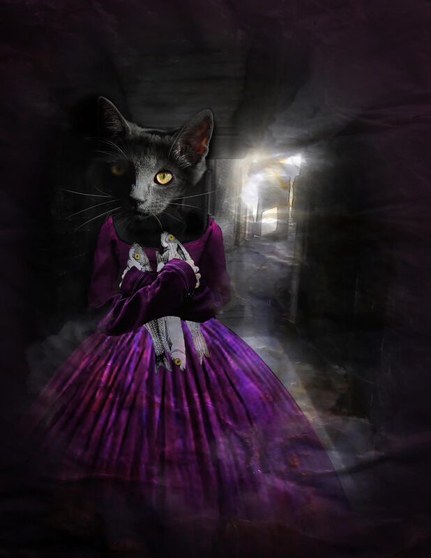 'Alley Cat' Greeting Card