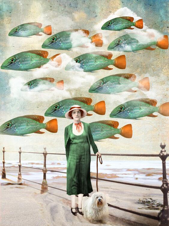 'Flying Fish'