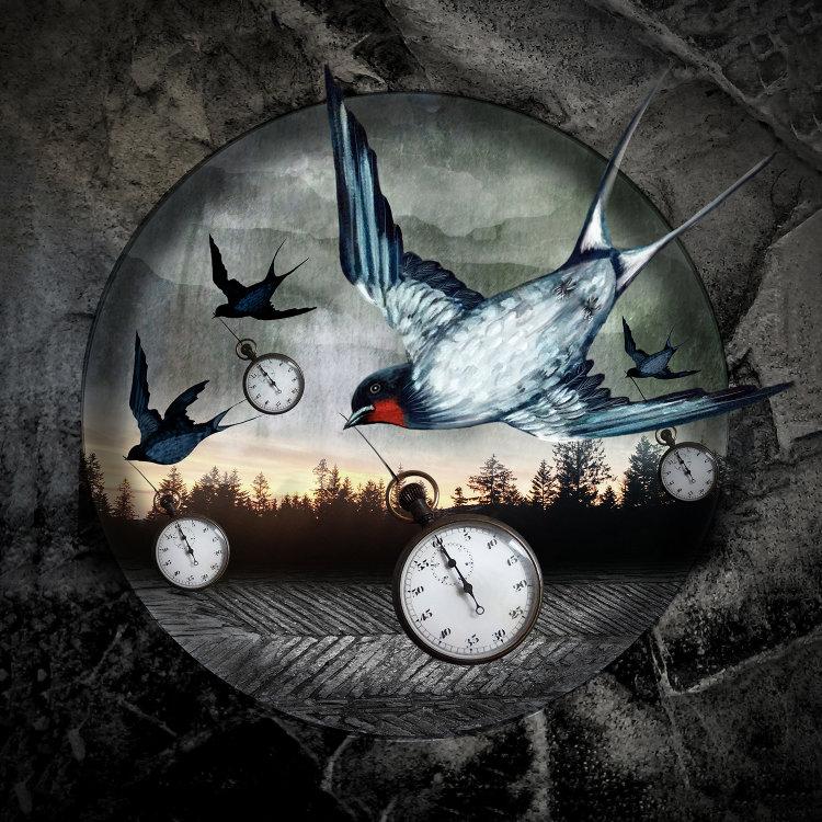 'Time Flies'