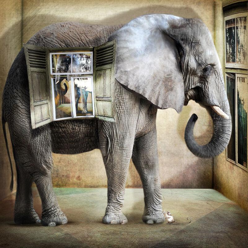 'Elephant in the Room in the Elephant in the Room'
