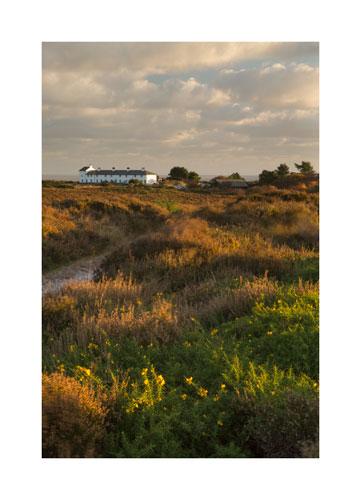 Dunwich Heath, Suffolk