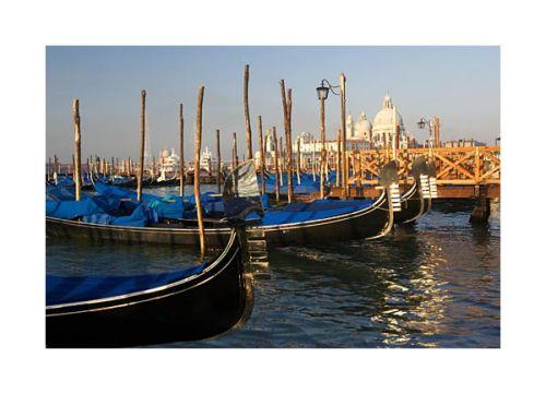 Gondolas & Santa Maria Della Salute,  Venice.