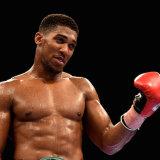 Heavyweight Boxer Anthony Joshua MBE 7