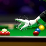 White glove (1)