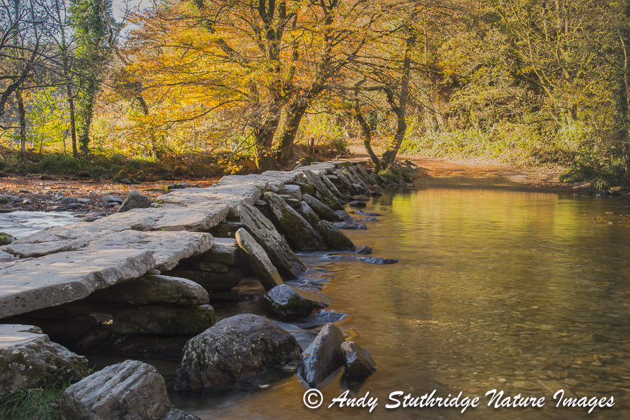 Autumn at Tarr Steps , Exmoor