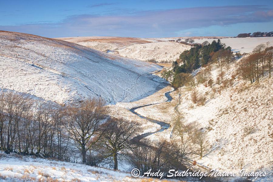 The River Barle in Winter at Cornham Brake,Exmoor