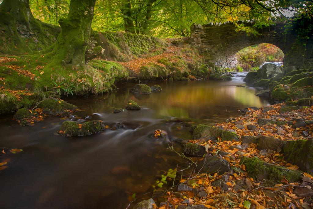 Autumn Colours at Robbers Bridge,Exmoor
