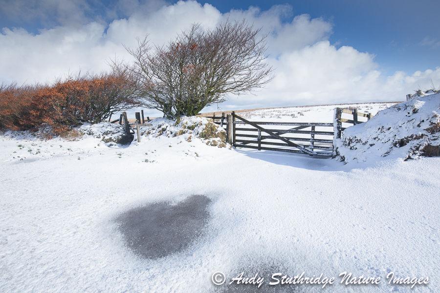Snow & Ice on Exmoor
