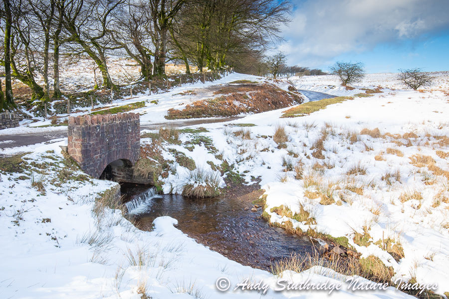 The Bridge over Chetsford Water ,Exmoor