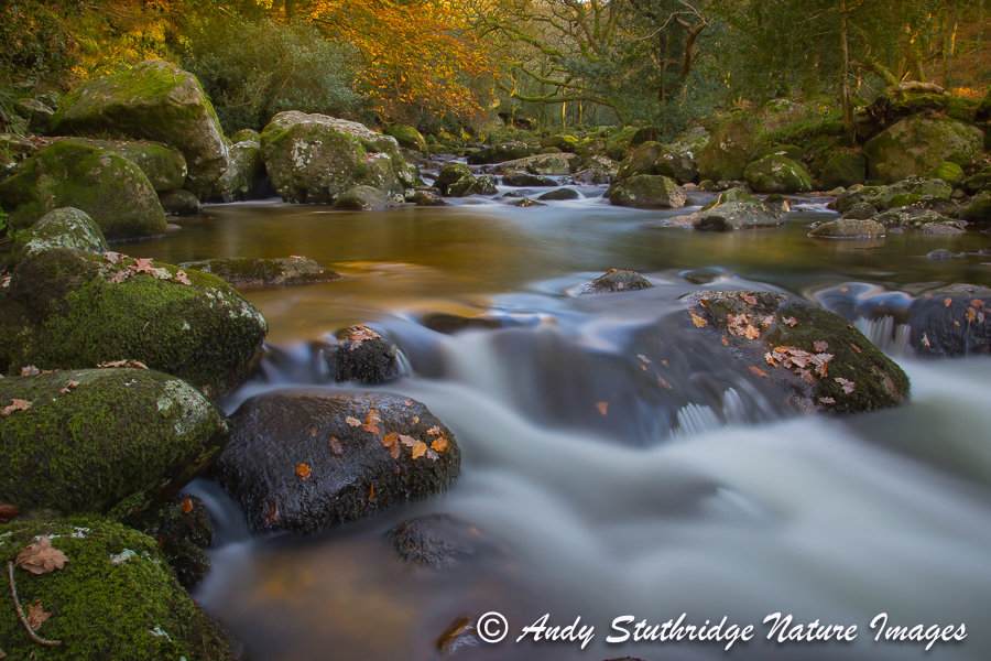 The River Plym,Dartmoor