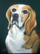 Bentley Beagle
