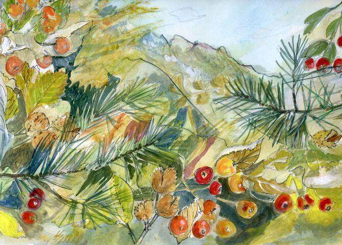 Alpes vegetation and Hillside