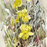 Three Yellow Irises