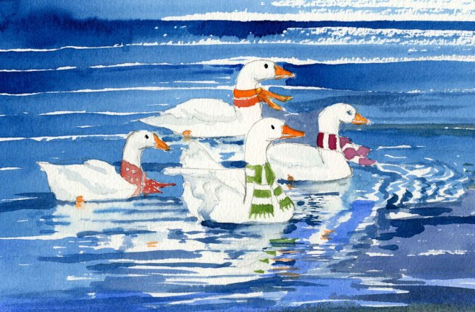 White Geese for Christmas