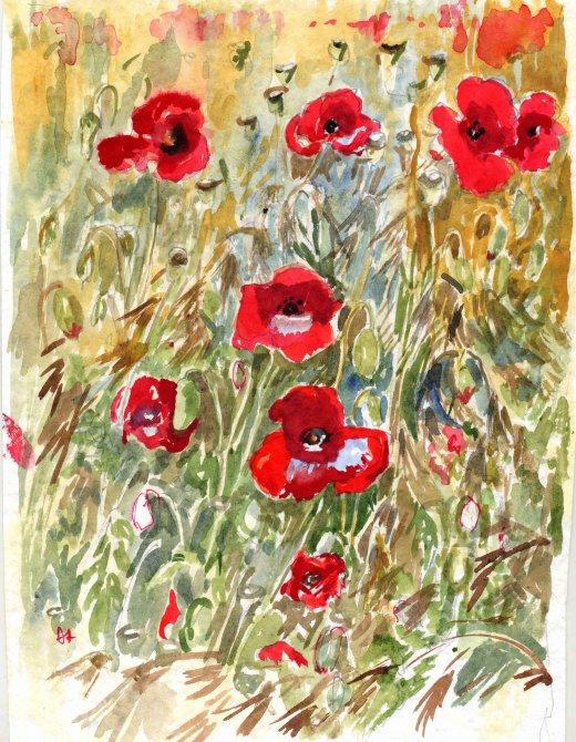Poppies Calvados