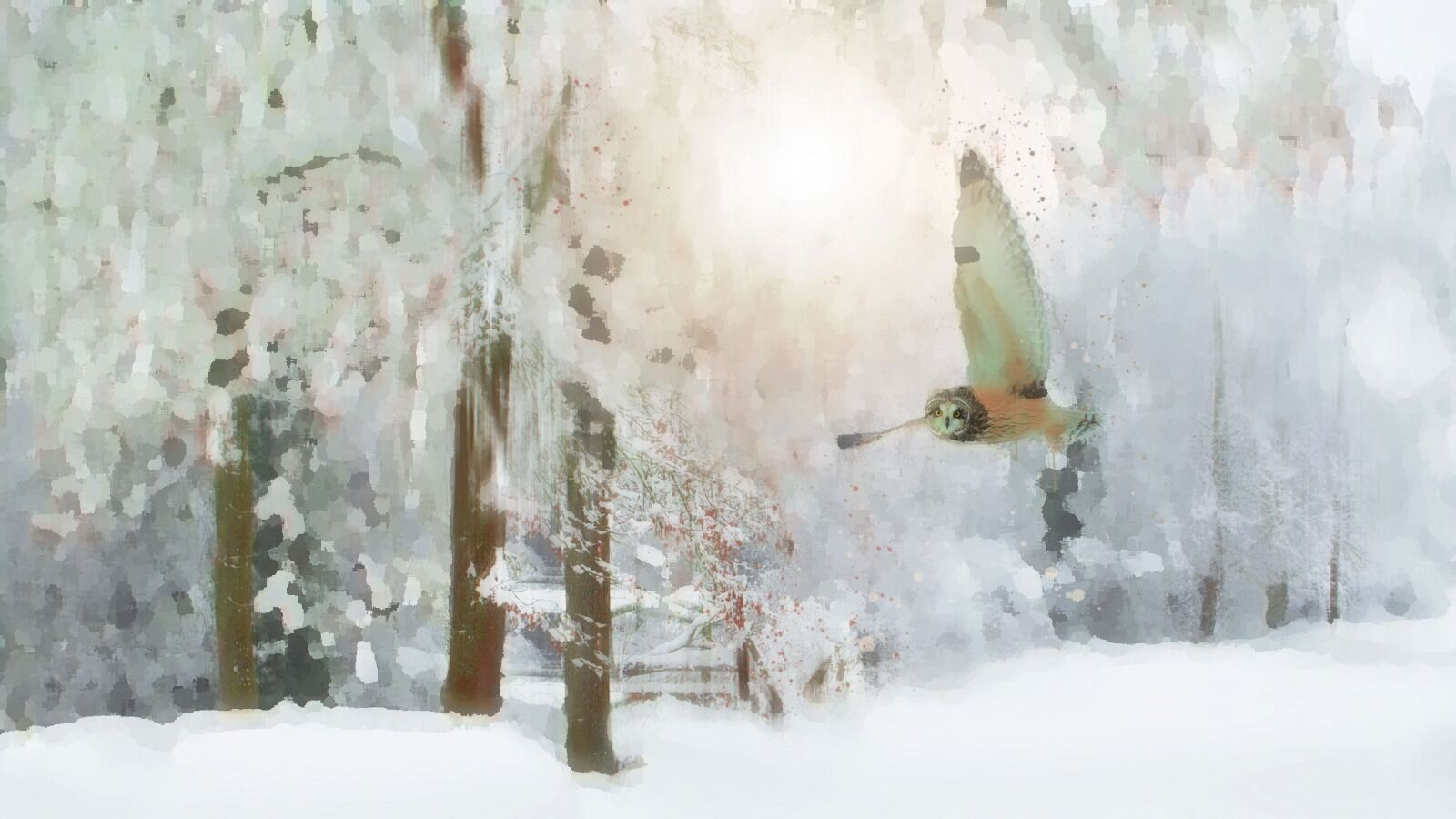 Barn Owl - Mixed Art Effect