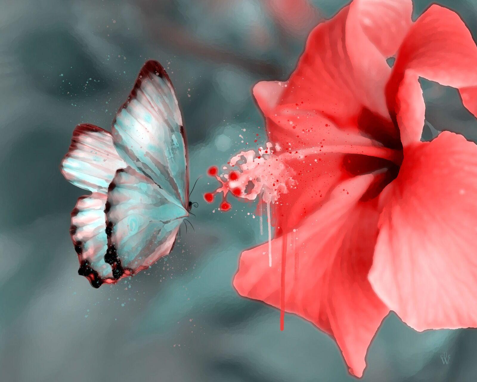 Butterfly - Mixed Art Effect