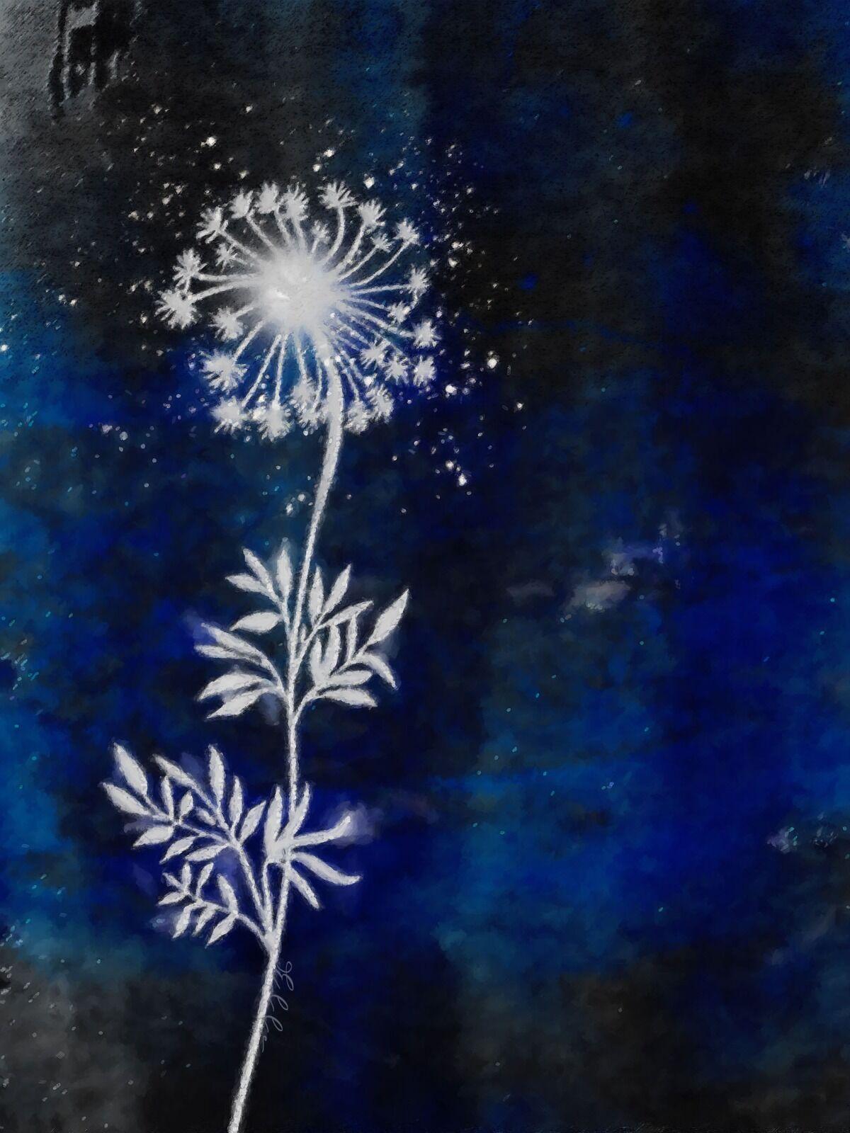 Plants by Moonlight