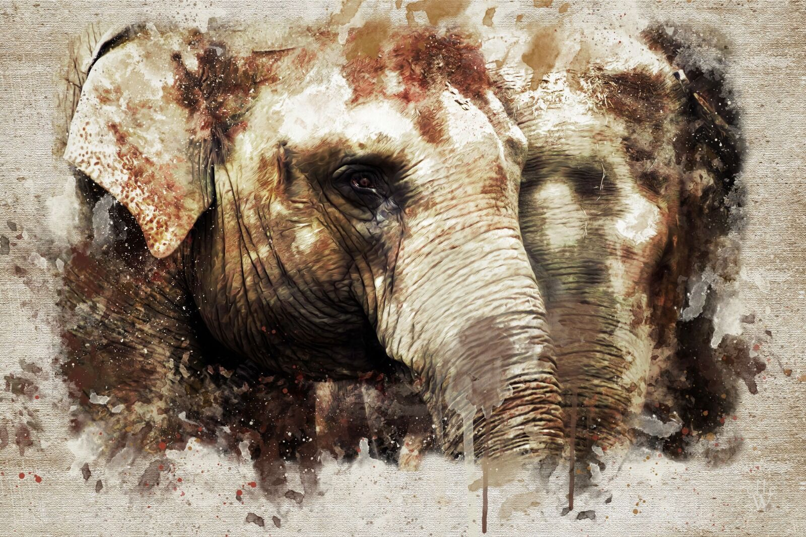 Elephants -Mixed Art Effect