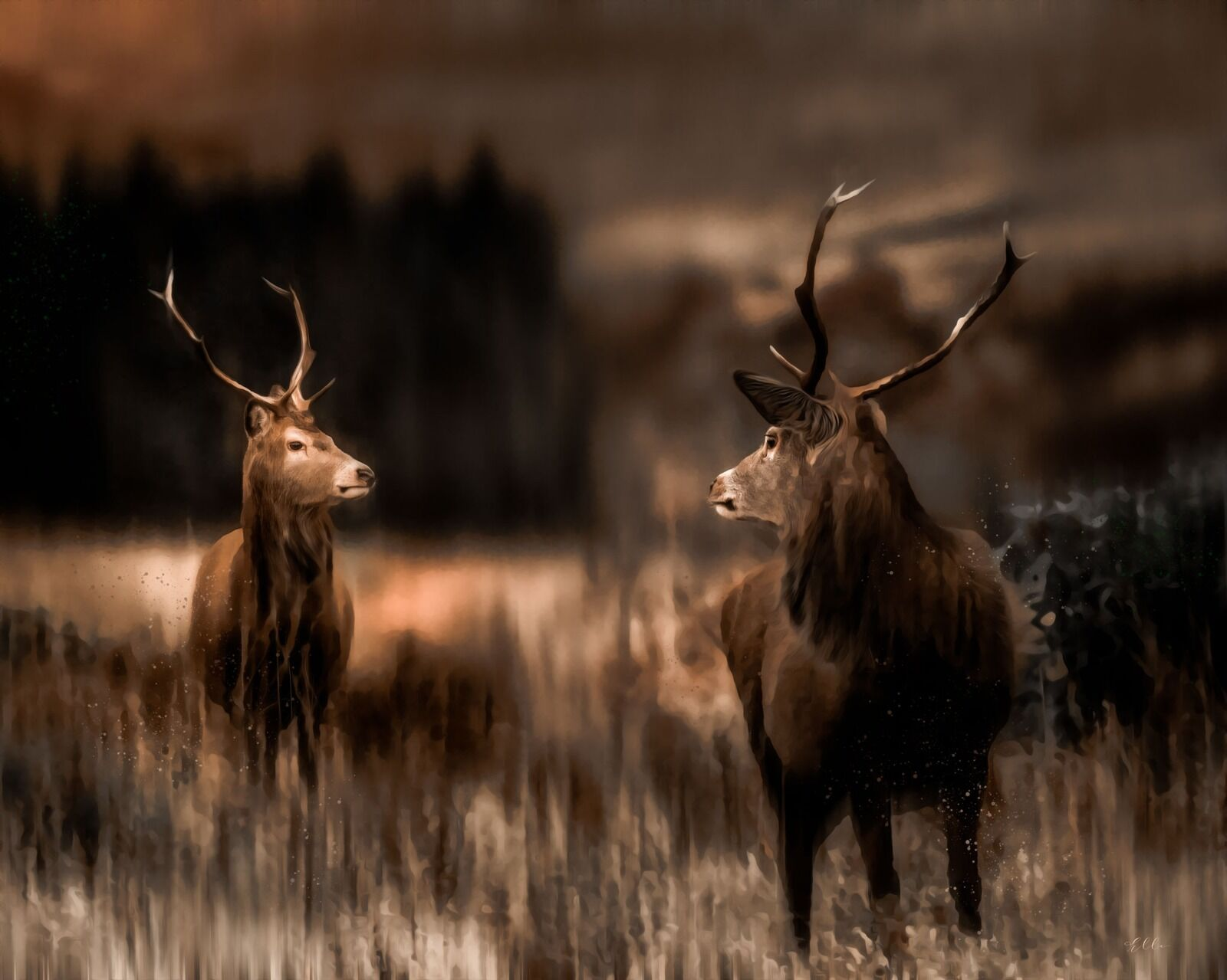 Stags of Scotland
