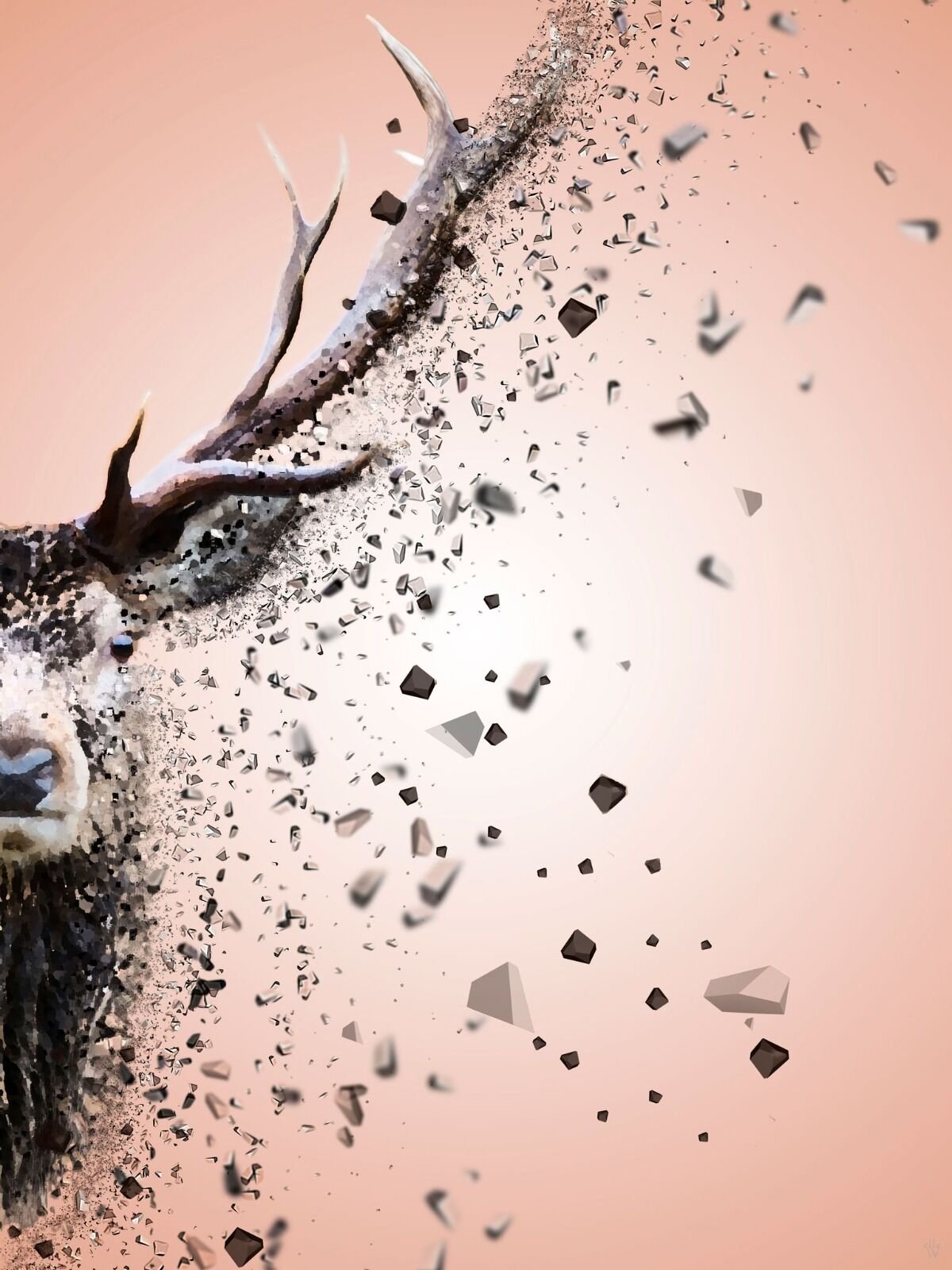 Stag - Dispersion Effect